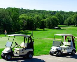 Trojan Golf Cart Battery